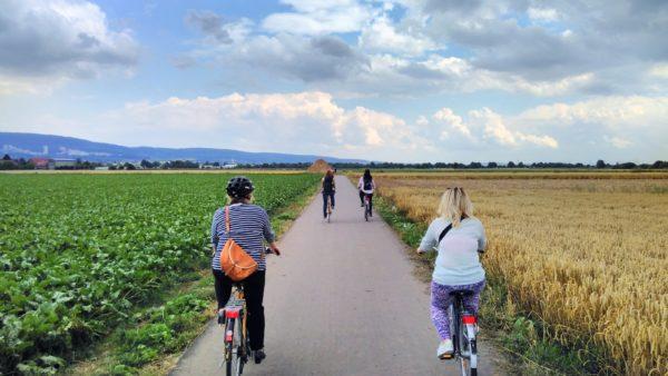 Fahrradtour zu vier Höfen im Kirchheimer Feld